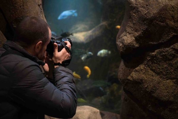 Photography class participant male crouching while taking photographs of fish while holding camera