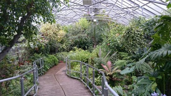 allan-gardens-conservatory